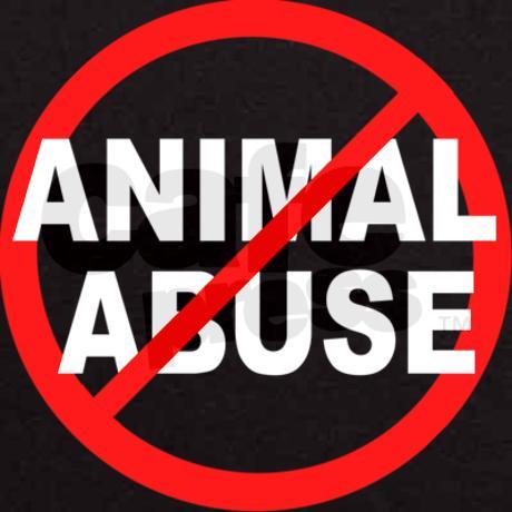 STOP ANIMAAL